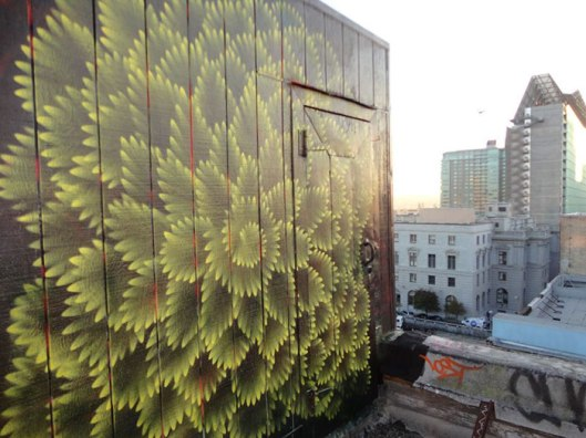 murales-caleidoscopicos-hoxxoh-douglas-hoekzema-8