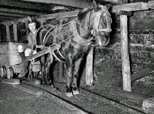 Tomada por Johnny Briggs que fue empleado por The Ashington Coal Company 1930-40